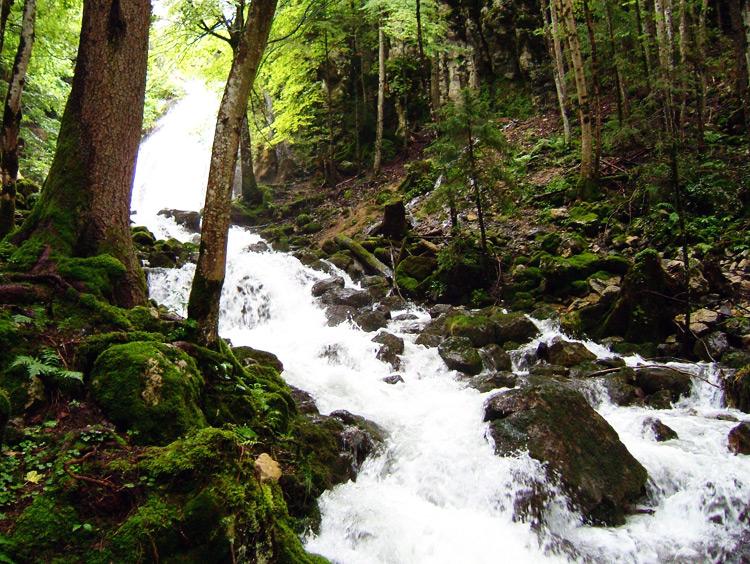 Rivière Bief de la Chaille